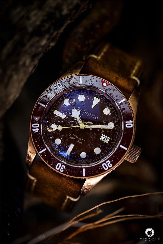 AQUATICO Bronze Sea Star Brown